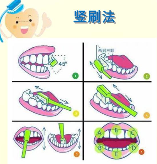 竖刷法刷牙